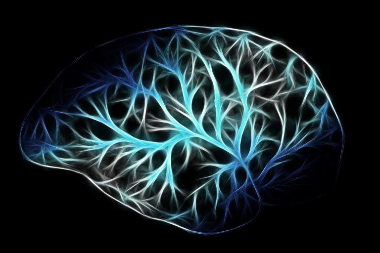Wet brain picture